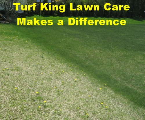 Turf King Lawn Care Makes a Difference