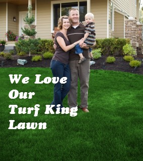 Great lawn care by Turf king