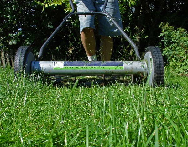 Proper Lawn Mowing Tips