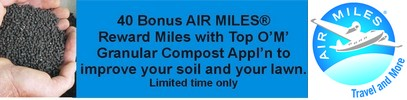 AIR MILES reward miles with Turf King Top OM application