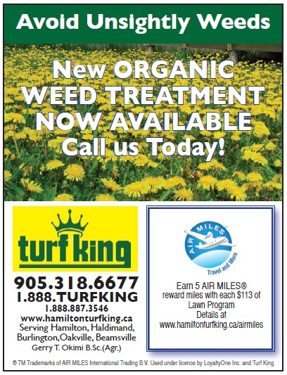 avoid unsightly weeds with Turf King